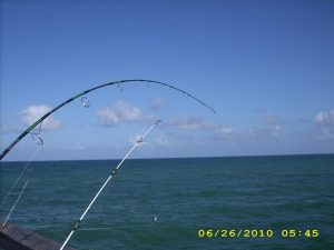 Anglins fishing pier - Tarpon caught on 06/26/2010